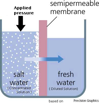 osmosis and osmotic pressure Osmosis and osmotic pressure the word osmosis comes from the greek word for pushing and refers to the passing of a substance through a semi-permeable.